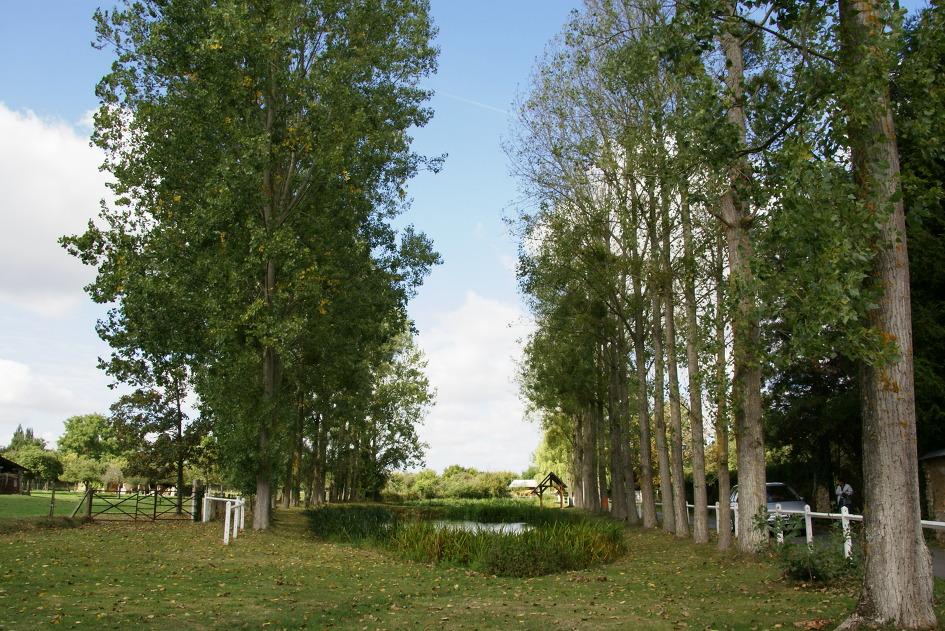 아름다운 텃밭  프랑스 생태마을 ---생기 넘치는 티올 오통 마을 ...
