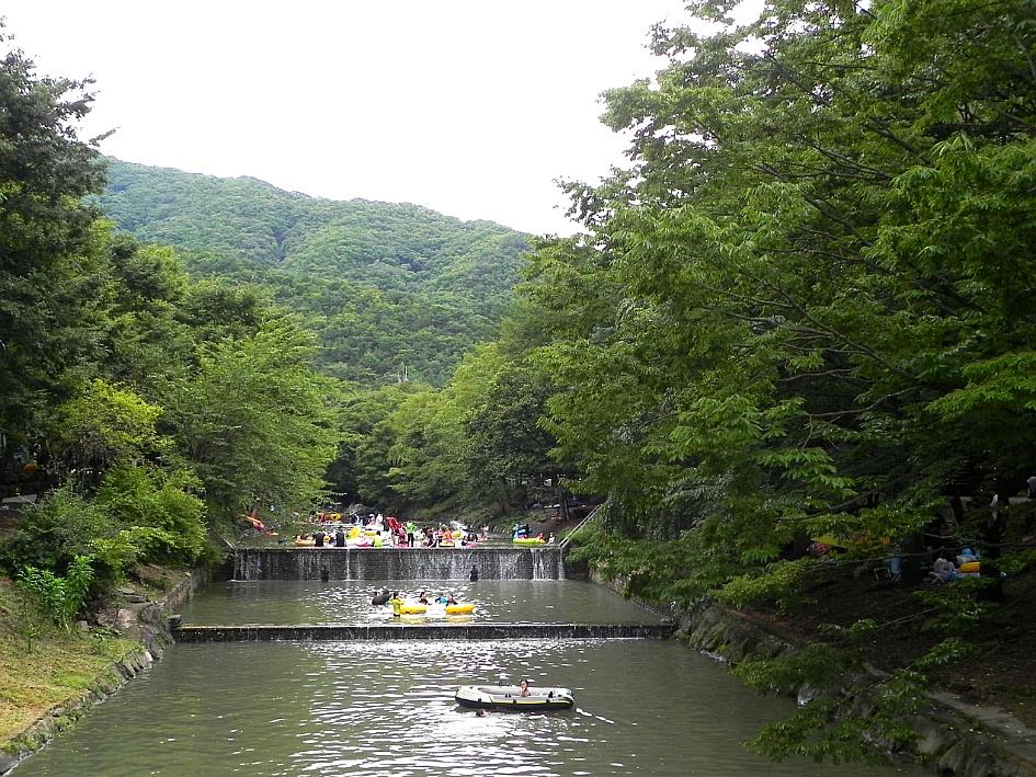 (완주무궁화) 완주 무궁화축제가 열리는 곳 사계절가족휴양지 고산자연휴양림