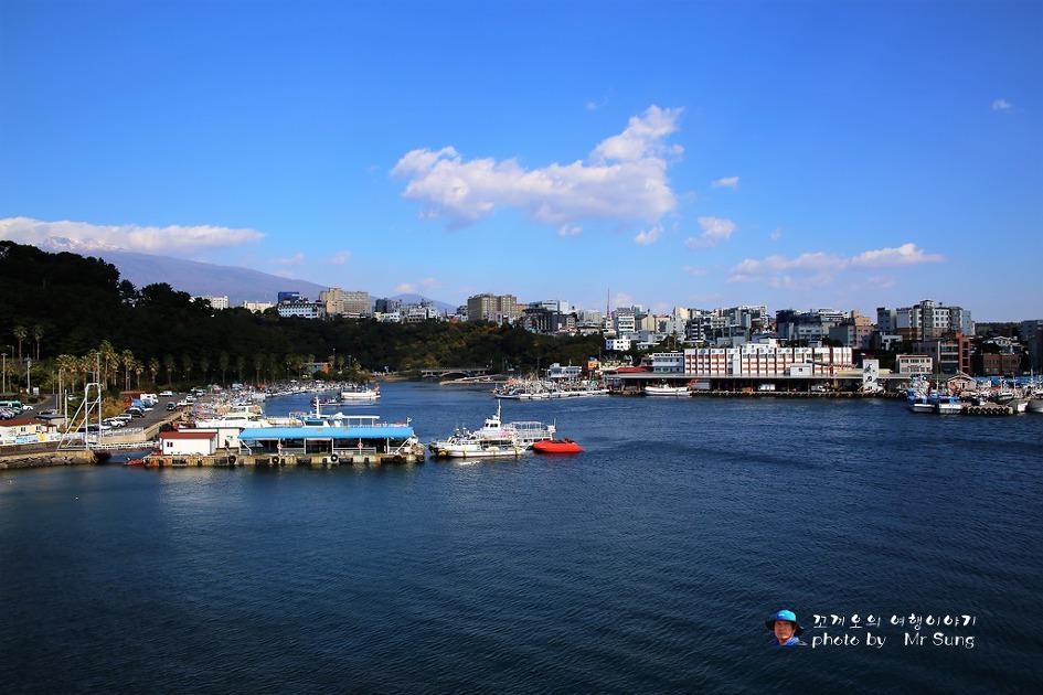 {제주도 서귀포시} 새연교에서 바라본 서귀포항의 아름다운 풍경